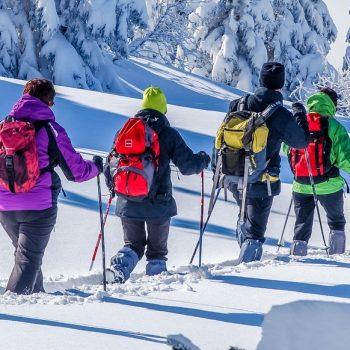 groupe en journée raquettes à la neige